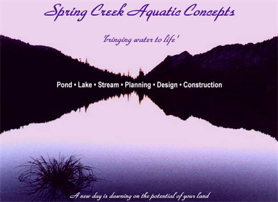 Spring Creek Aquatic Concepts