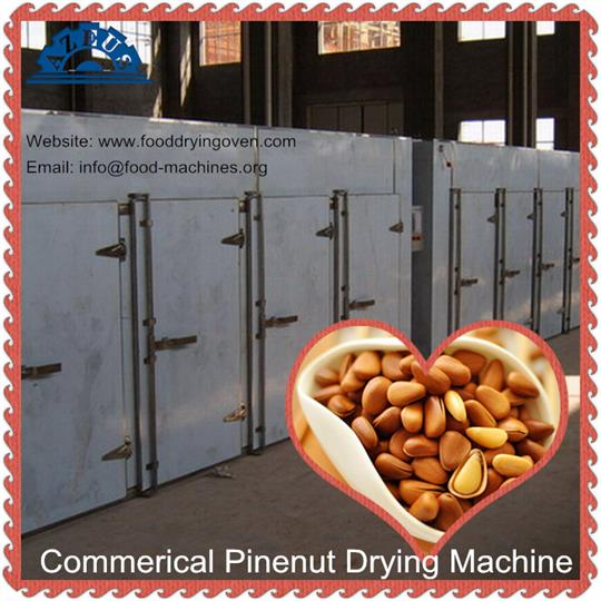 AZEUS - Wholesale Pine Nuts Drying Machine