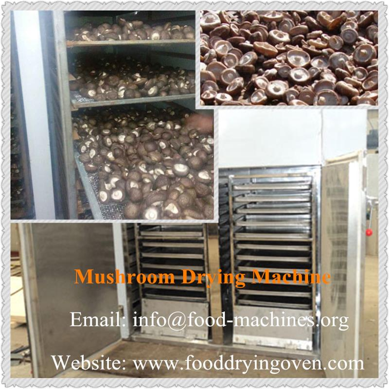 AZEUS - Mushroom Drying Machine
