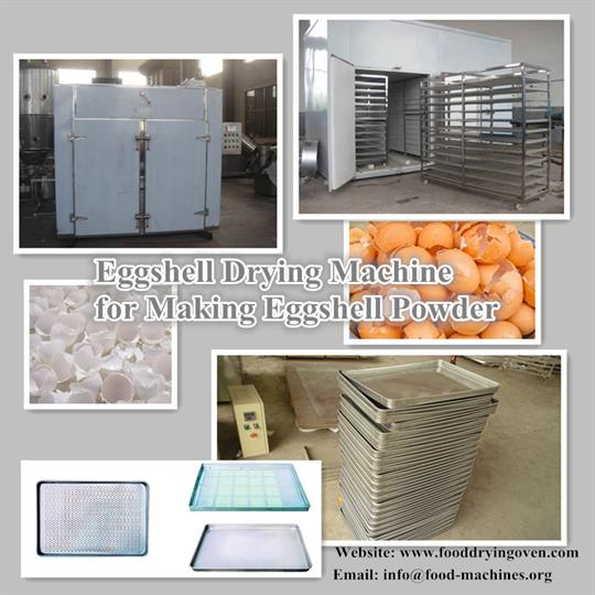 AZEUS - Eggshell Drying Machine for Making Eggshell Powder