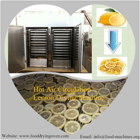 AZEUS - Hot Air Circulation Lemon Drying Machine