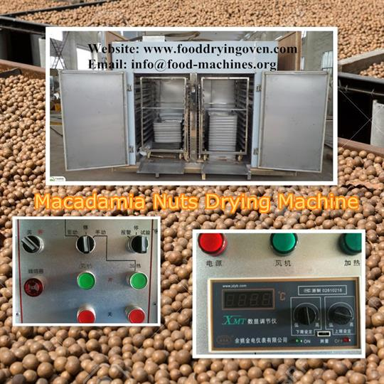 AZEUS - Macadamia Nuts Drying Machine
