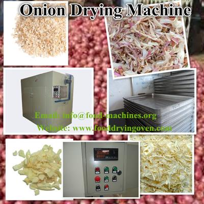 AZEUS - Onion Drying Machine