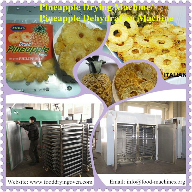 AZEUS - Hot Air Pineapple Drying Machine