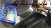 Automatic Garlic and Ginger Slicing Machine Supplier,Garlic Slicing Machine