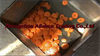 Fruit And Vegetable Cutting Circle Machine,Carrot Cutting Circle Machine