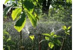 Industrial Agricultural Irrigation Services
