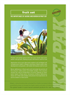 Auxins - Natural Plant - Brochure