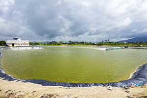 Animal Wastewater Lagoons