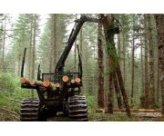 Biomass harvesting: how forest thinning can help prevent wildfires