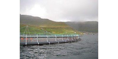Fish Cages