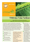 LITHOvit AMINO - Model 25 - Foliar Fertilizer - Brochure