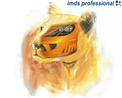 imds professional GmbH & Co. KG