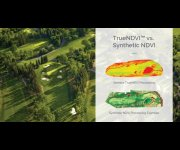 TrueNDVI vs. Synthetic NDVI Explained