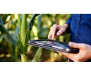 NDVI and Your Farm: Understanding NDVI for Plant Health Insights