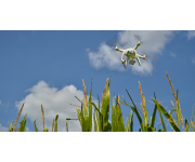 Taking the Guesswork Out of Precision Scouting Drones