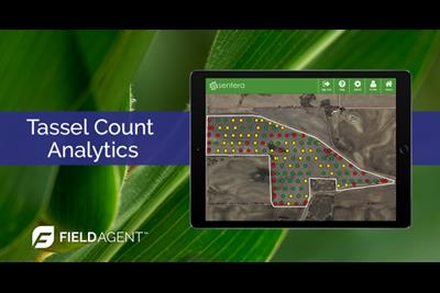 Sentera FieldAgent Analytics Toolset Expands to Include Tassel Counts