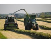 Silage harvesting partly responsible for decline in skylarks
