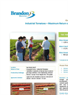 Industrial Tomatoes – Maximum Return on Investment  - Crop Trial Bulletin
