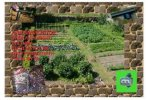 Model lrrile - Drip Irrigation Vegetable Garden Kit