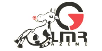 Lmr Azene Ltd