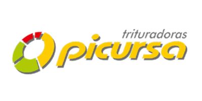 Picursa
