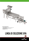 MADRINA - Model 50 or 100 - Stalk-Removing Pressing Machine Brochure