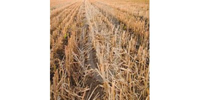 Stubble-X - Degrades Stubble in Organic Materials