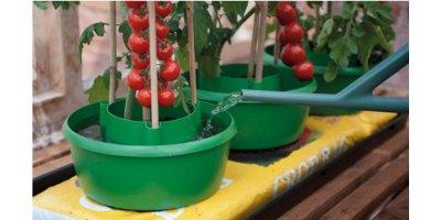 Model G167G - Green Plant Halos