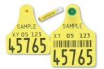 Flexo Plus Geno - Model G/D - Tissue Sampling Ear Tags