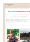 How to Process Chicken Manure Fertilizer