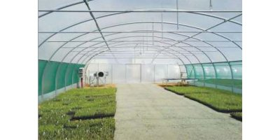 Tunnel Greenhouses