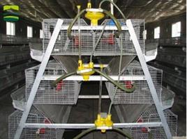 Great Farm - Broiler Cages