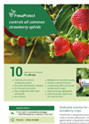 FresaProtect - Strawberry Aphid Species Parasitoides Brochure