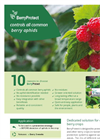 BerryProtect - Berries Aphid Species Parasitoides Brochure
