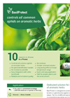 BasilProtect - Herbs Aphid Species Parasitoides Brochure