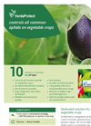 VerdaProtect - Aphid Species Parasitoides for Vegetables - Brochure