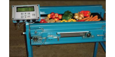 RiteWeight - In-Line Conveyor Scale System