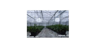 Hyplast - Model NV - Greenhouse Polyethylene Film