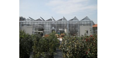 Artigianfer - Model STO - Glass Greenhouses