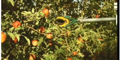 FFRobotics - Robotic Fruit Harvester