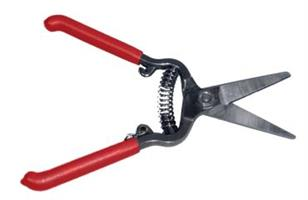 Corona - Model FS4350 - Harvest Thinning Shears