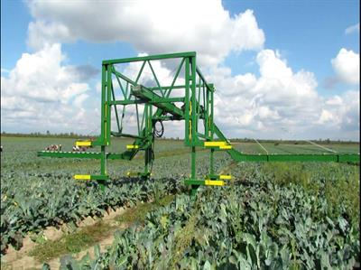 Elektronik - Conveyor Belts for Harvesting Vegetables