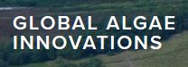 Global Algae Innovations, Inc.