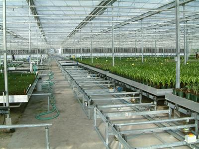 TAVA - Automated Greenhouse Transport Lines