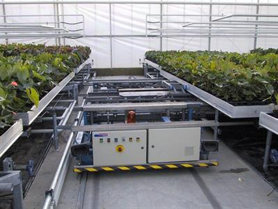 TAVA - Greenhouse Table Vehicles