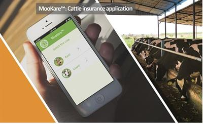 MooKare - Cattle Insurance App