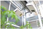 Plant Phenotyping Automation System